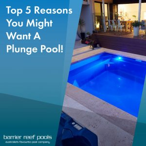 top 5 reasons you might want a plunge pool